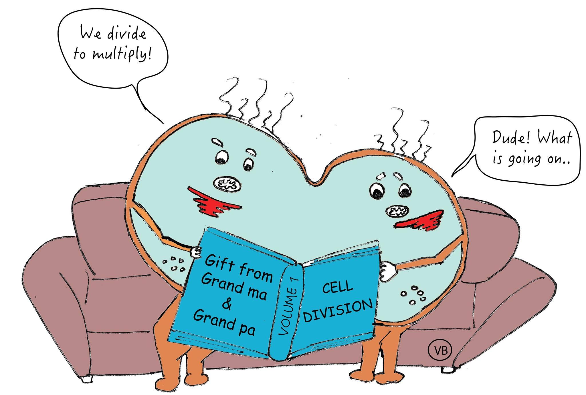 Illustrations Fuzzy Synapse